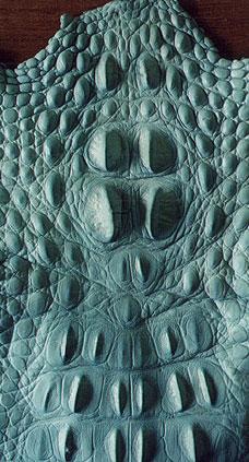 крокодиловая кожа, гермес