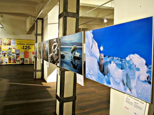 посещение выставки