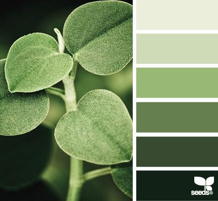 зеленый, книги, вдохновение
