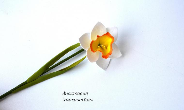 Нарцисс мастер-класс