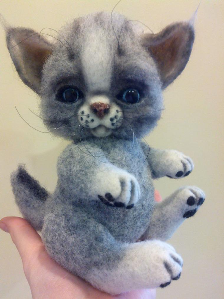 котенок-тедди