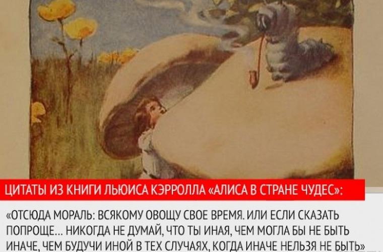 оргазмы пословица или крылатое выражение про картон стервы сосут, лижут