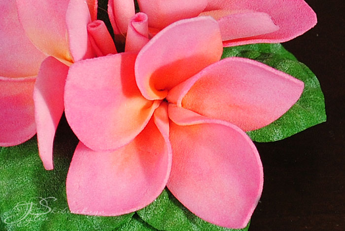 мастер-класс по цветам, экзотические цветы