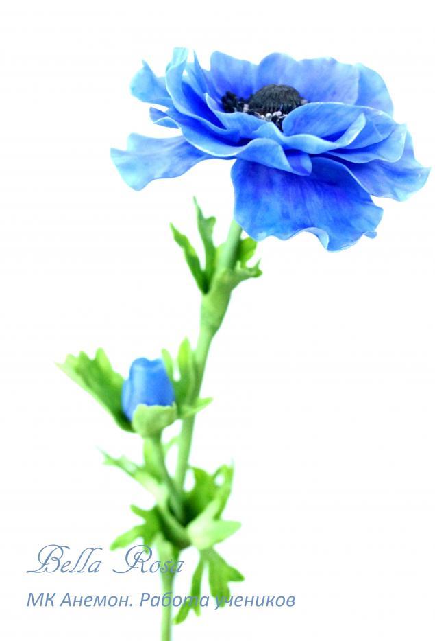 холодный фарфор, цветы из глины, школа лепки цветов