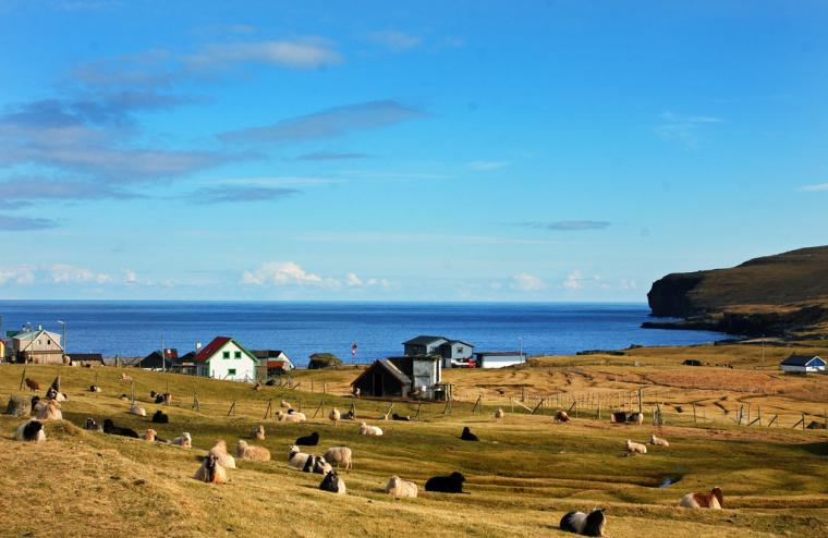 美丽的丹麦法罗群岛的披肩 - maomao - 我随心动