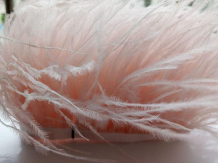 Страусиные перья на ленте купить москва