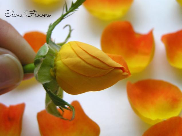 цветоделие, украшения