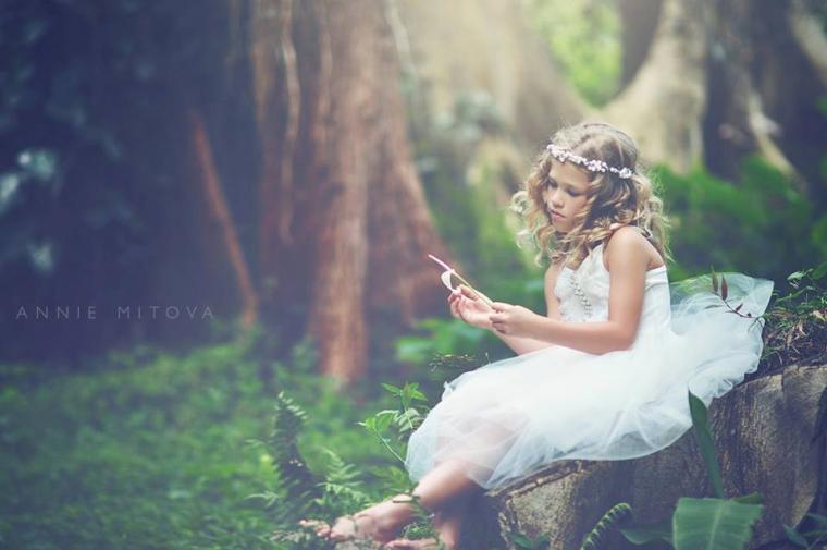 свадьба картинки с феями очень подробно