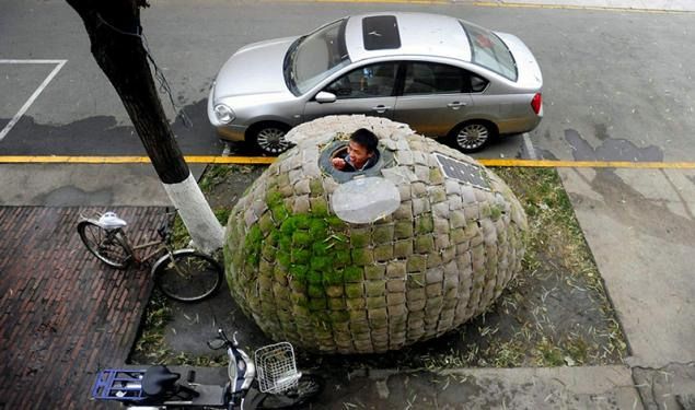 Одноместный дом-яйцо