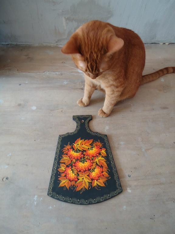 кошки, поднос, ручная роспись, фотосессия