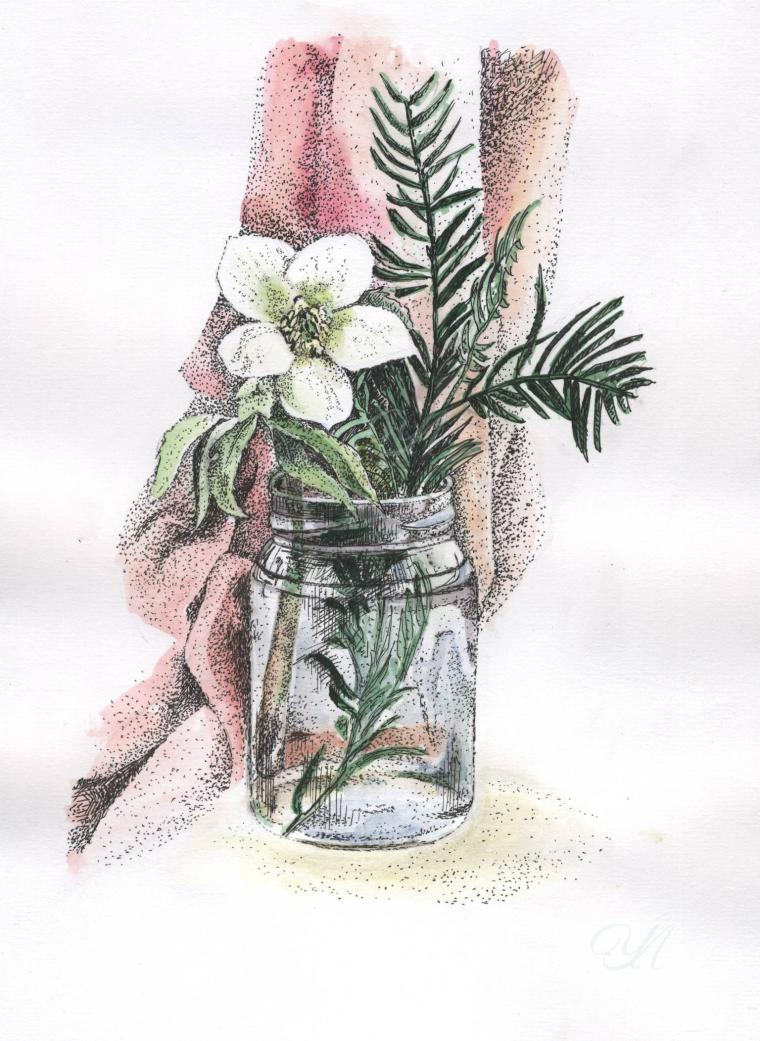 цветы, рисунок, акварель, акварельная живопись, картины акварелью, аква
