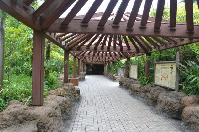 Дикий забег по Токио за 7 дней. День пятый. Зоопарк Уэно и детские магазины., фото № 10