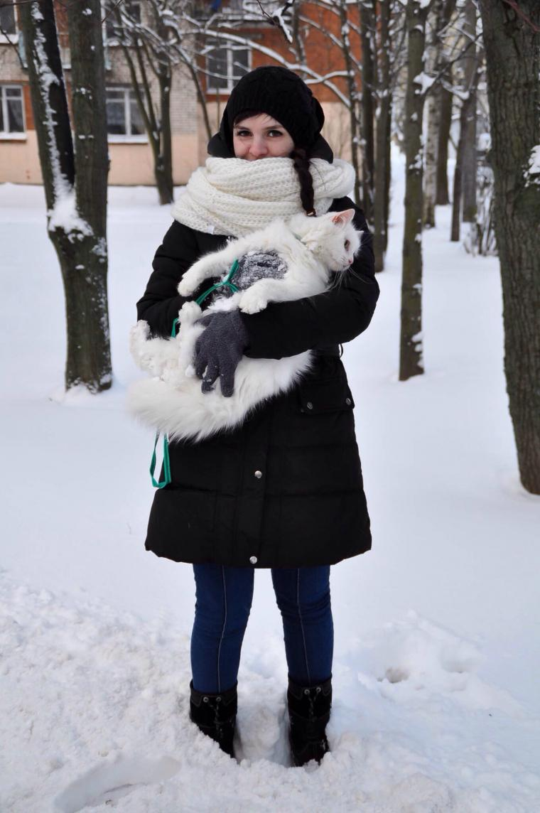 кот, зима