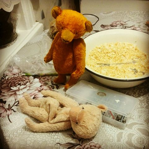 мишки-тедди