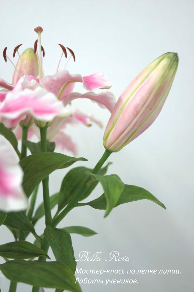 лепка цветов, флористика