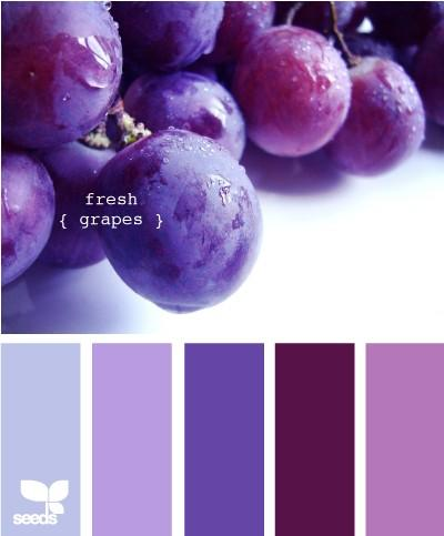 themes in the colour purple