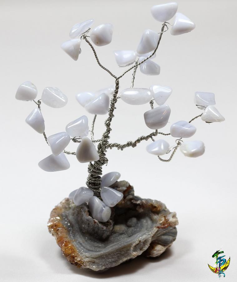 каменное дерево