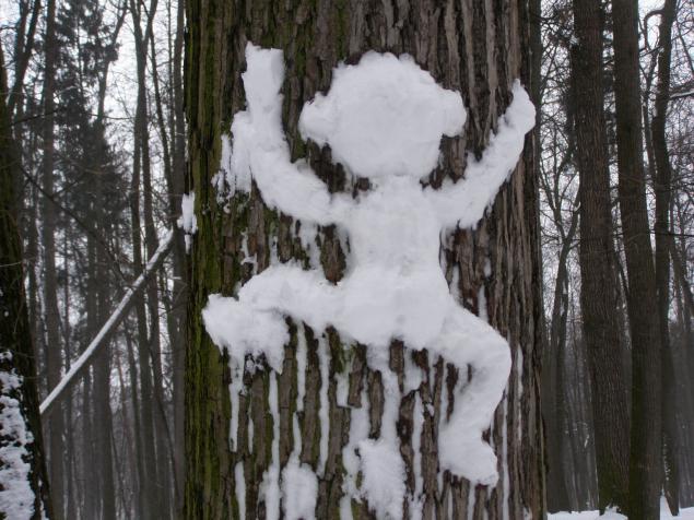 Царицыно в зимнем ракурсе., фото № 15