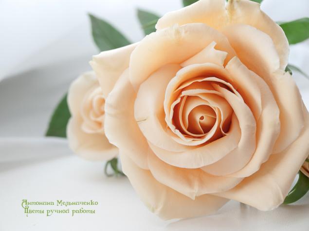 лепка из пластики, лепка из полимерной глины, полимерная флористика, розы