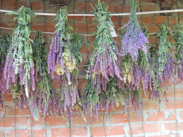 венок из сухоцветов, флористический коллаж