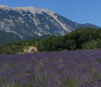 Предгория провинции Прованс