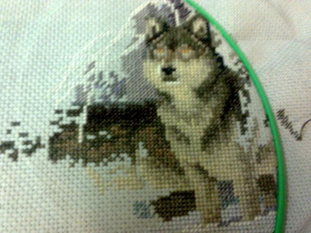 вышивка, волк, dimensions