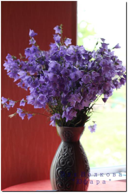 цветочки, декор