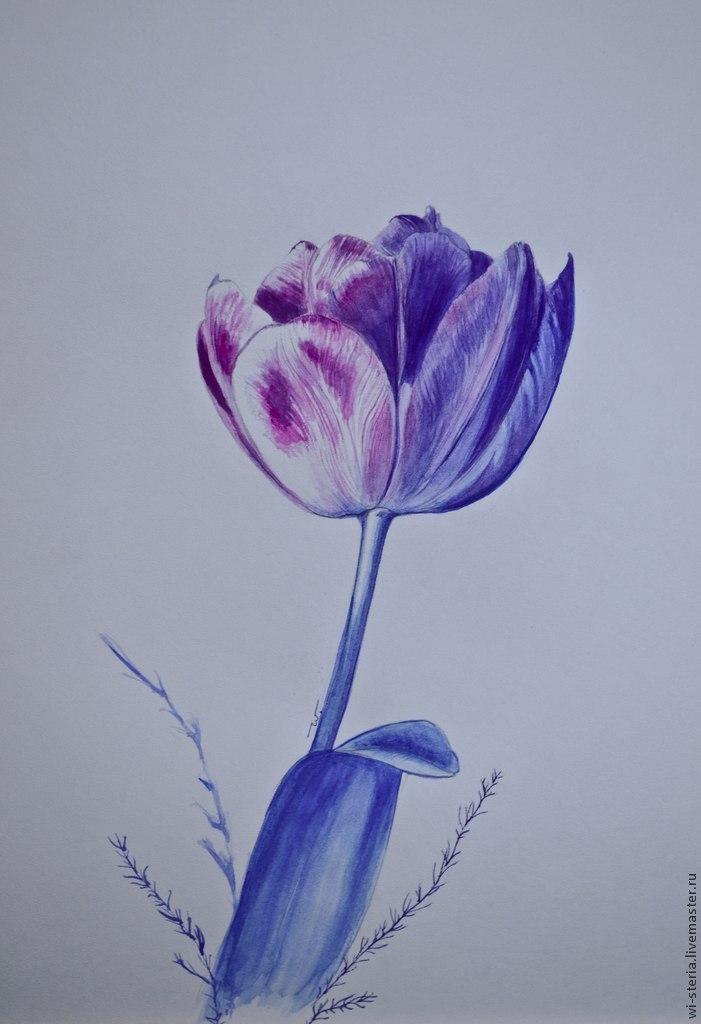 тюльпан, подарок маме