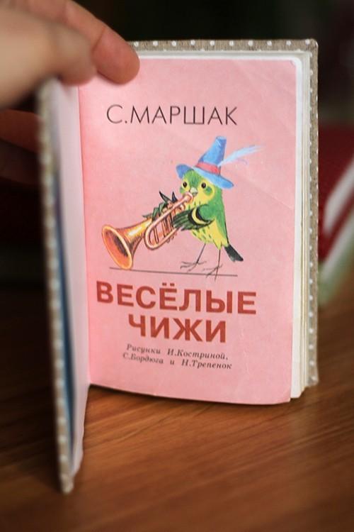 Книга-чижи