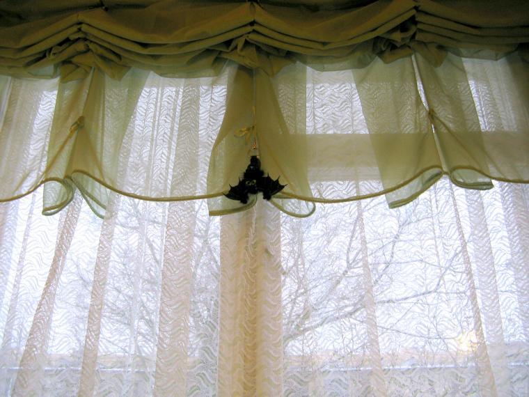 летучий мышонок