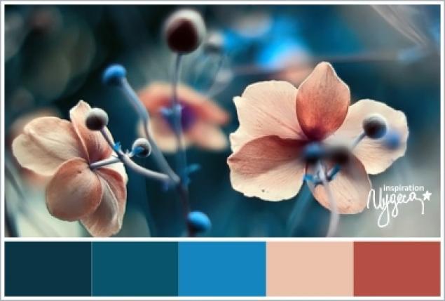 Сочетание цветов в природе