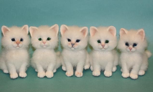 мастер-класс, мастер-класс по валянию, мк по валянию, мк по сухому валянию, сухое валяние, сухое валяние игрушки, игрушка ручной работы, игрушки из шерсти, игрушки из войлока, котики, кот, котенок, котята, кошки