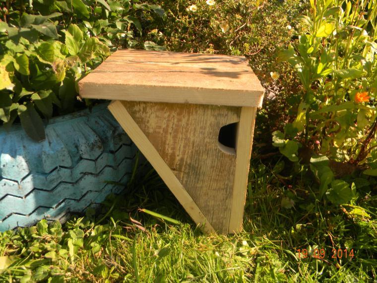 Каждой птице свой дом, фото № 6