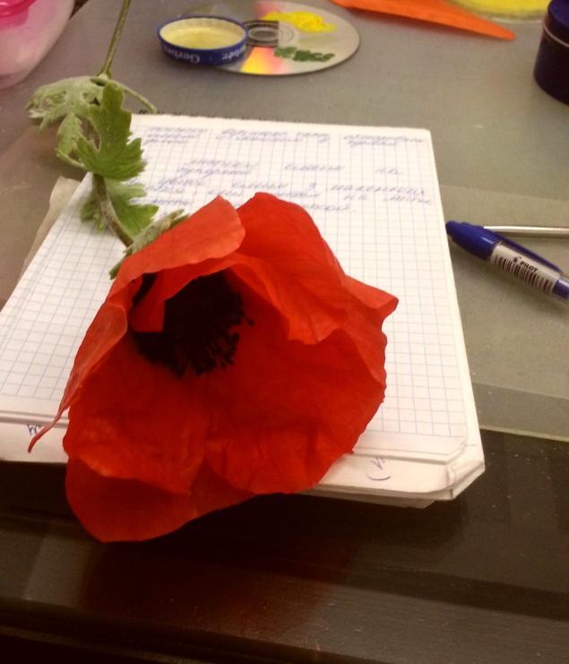 Цветы-это состояние души!, фото № 10