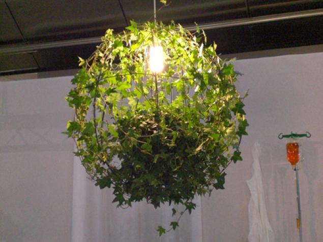 Освещения для растений своими руками