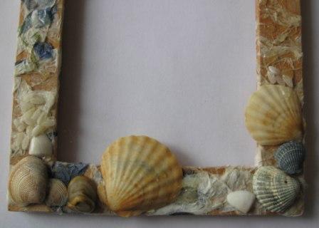 море, морские ракушки