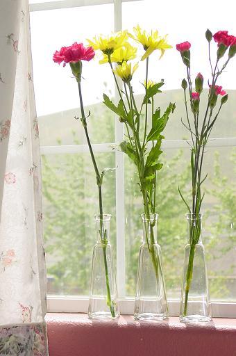 цветочный интерьер