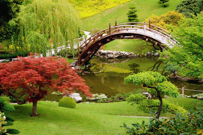 Микромиры: японские сады камней, фото № 10