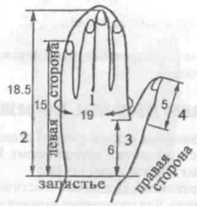 Рукавица своими руками выкройка