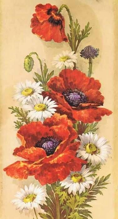 изображение цветов