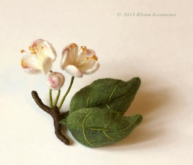 цветы, казакова юлия
