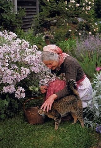 Я в саду! Заходите!, фото № 77