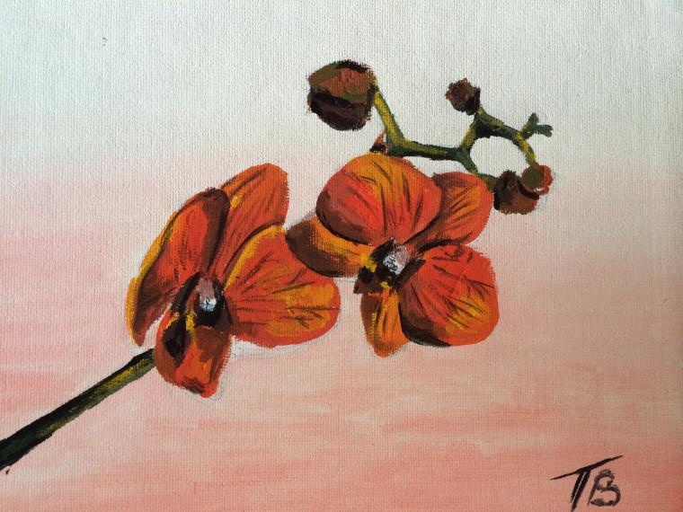 орхидея, красная орхидея, картина маслом, скидки, скидка, скидка 50%, красный, цветы, картина с цветами