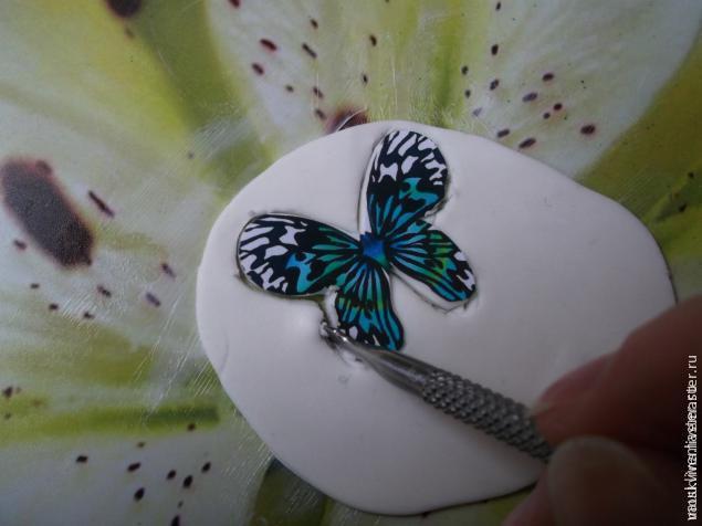 бабочки, лепка цветов