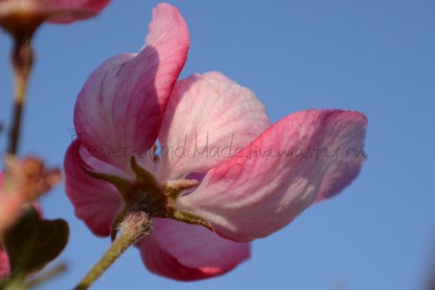 выкройка цветка