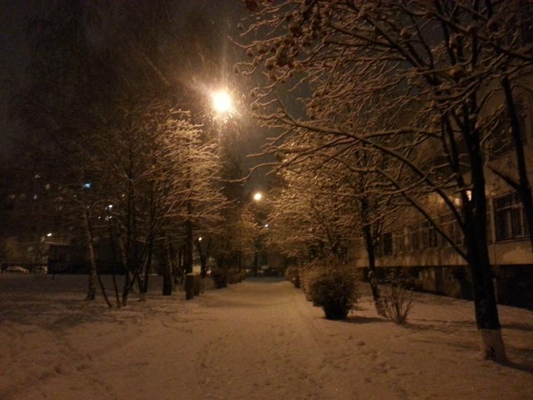 белый снег, метель, новый год, зима