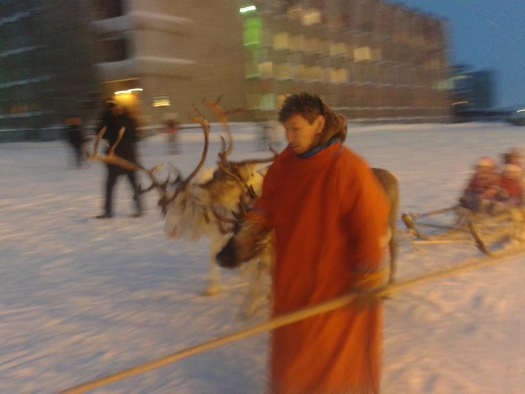олени, праздник, блог татьяны ищук
