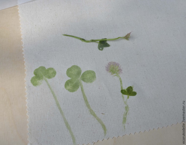 How to Make Plant Prints on Fabric, фото № 7