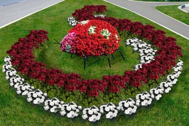 Красивые цветы дизайна