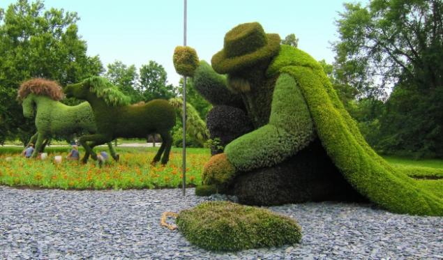 растительная выставка